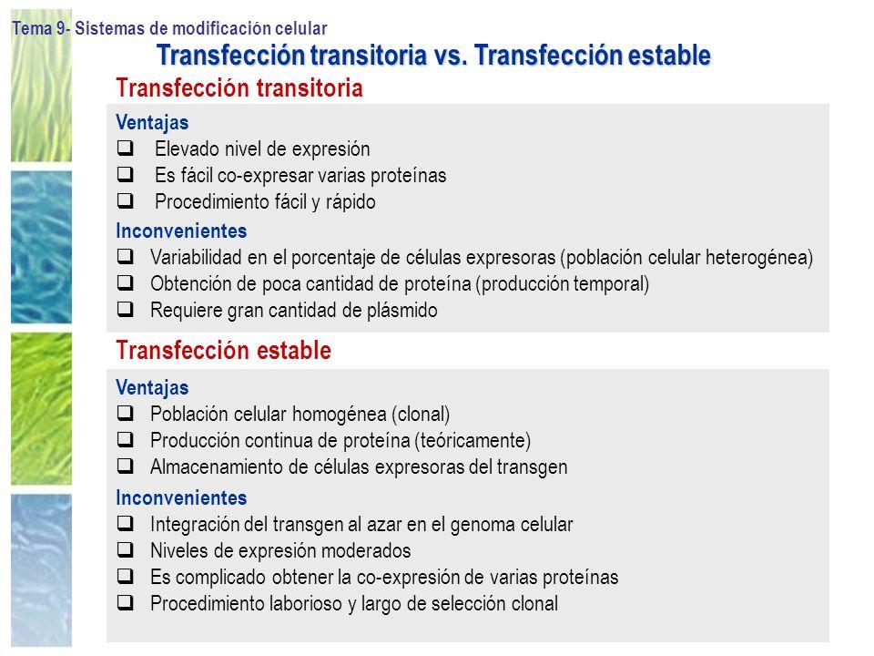 Tema 9- Sistemas de modificación celular 31 Ventajas Elevado nivel de expresión Es fácil co-expresar varias proteínas Procedimiento fácil y rápido Ven