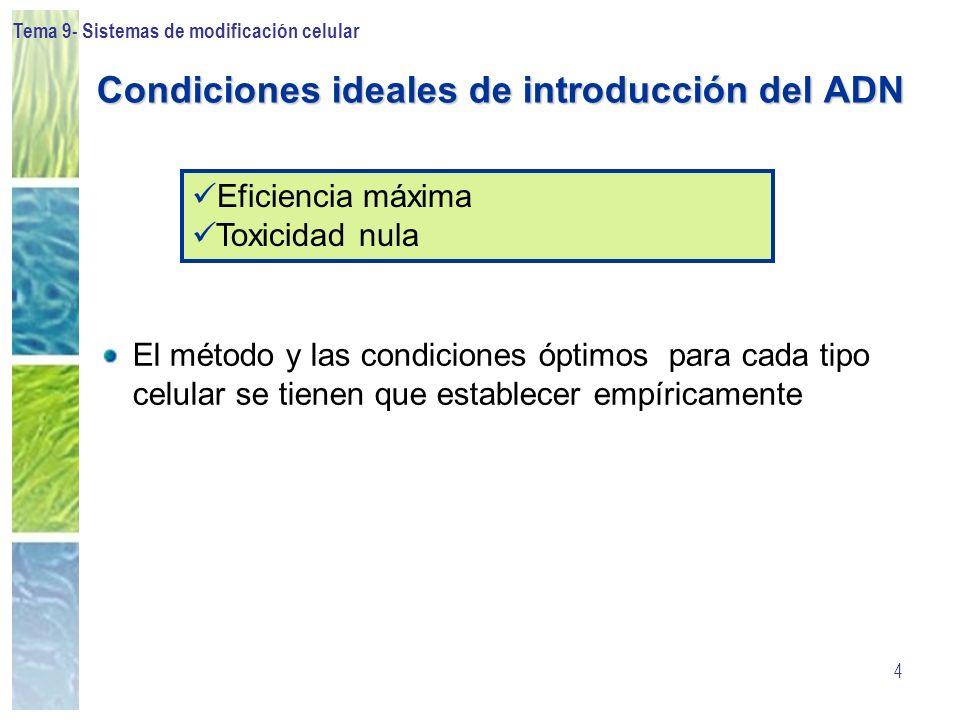 Tema 9- Sistemas de modificación celular 4 Condiciones ideales de introducción del ADN El método y las condiciones óptimos para cada tipo celular se t