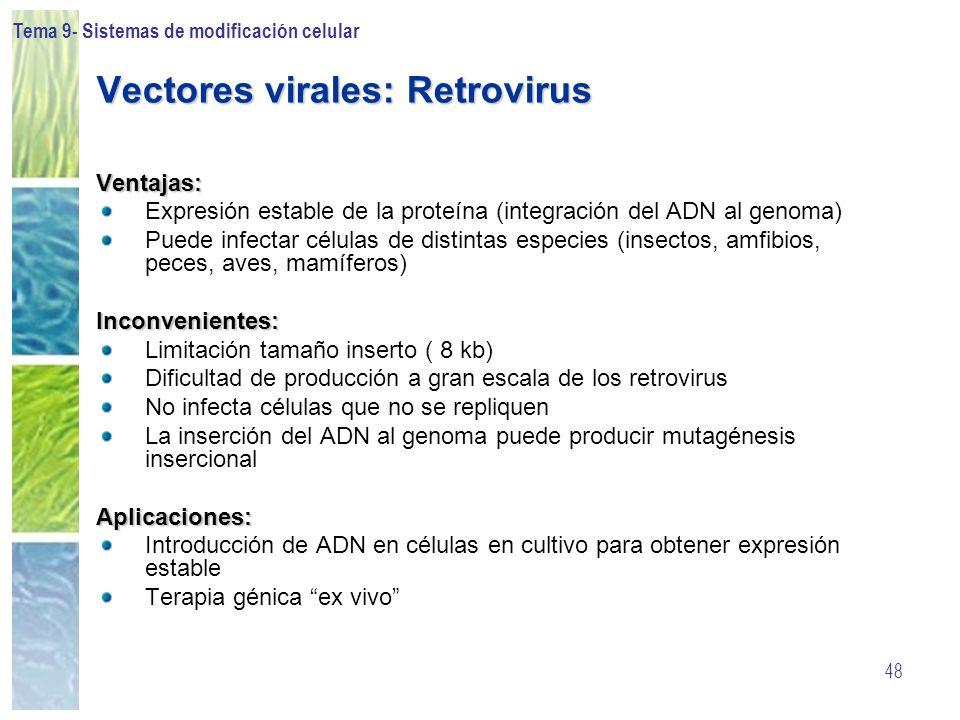 Tema 9- Sistemas de modificación celular 48 Vectores virales: Retrovirus Ventajas: Expresión estable de la proteína (integración del ADN al genoma) Pu