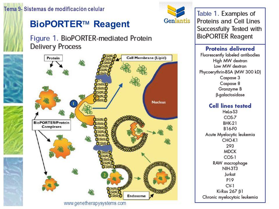 Tema 9- Sistemas de modificación celular 54 BioPORTER Reagent www.genetherapysystems.com