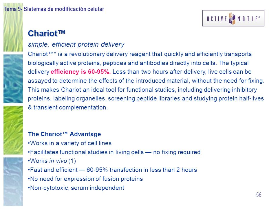 Tema 9- Sistemas de modificación celular 56 Chariot simple, efficient protein delivery Chariot* is a revolutionary delivery reagent that quickly and e