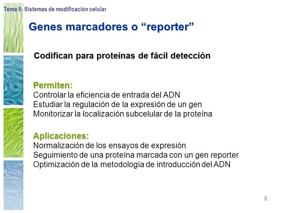 Tema 9- Sistemas de modificación celular 8 Permiten: Controlar la eficiencia de entrada del ADN Estudiar la regulación de la expresión de un gen Monit