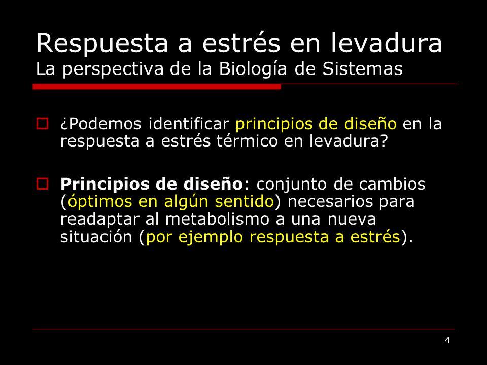 5 Hipótesis y Objetivos Hipótesis: Los cambios en expresión génica proporcionan una respuesta adaptativa que está restringida por requerimientos fisiológicos.