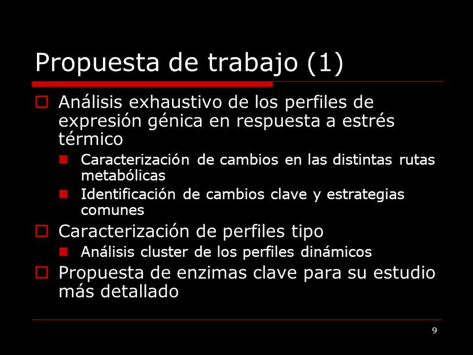 10 Propuesta de trabajo (2) Estudio de la correlación entre perfiles dinámicos de expresión y las propiedades de las proteinas Relación con el tamaño y abundancia Posición en la vía metabólica Coste de expresión ……..