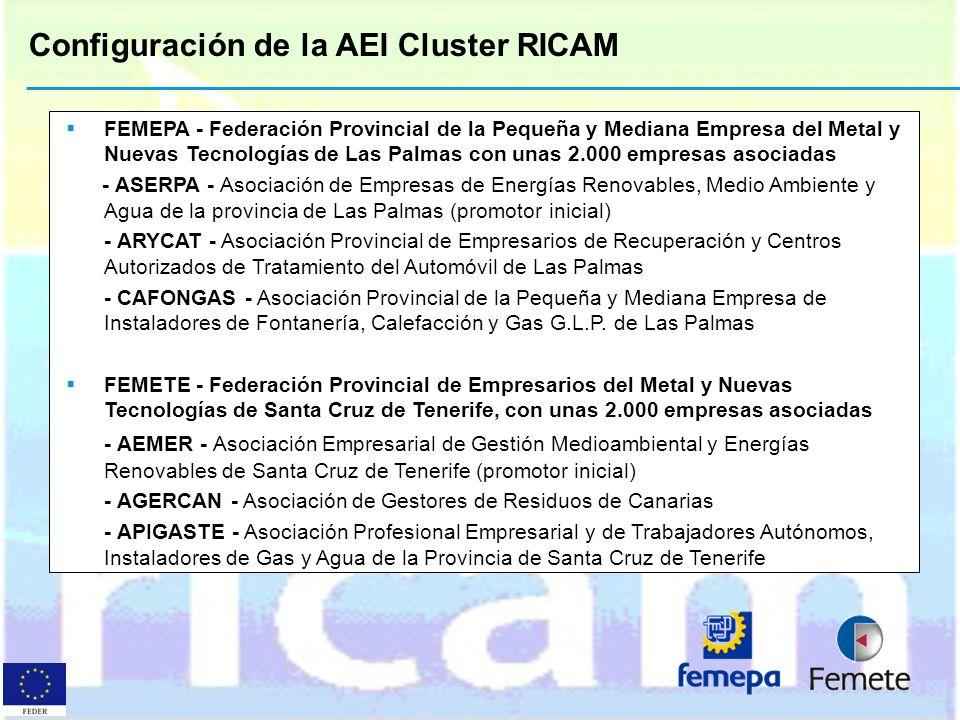 Configuración de la AEI Cluster RICAM FEMEPA - Federación Provincial de la Pequeña y Mediana Empresa del Metal y Nuevas Tecnologías de Las Palmas con