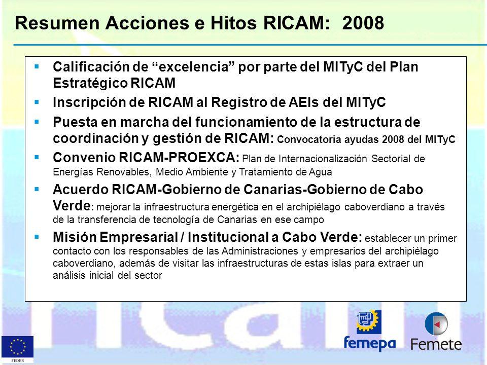 Resumen Acciones e Hitos RICAM: 2008 Calificación de excelencia por parte del MITyC del Plan Estratégico RICAM Inscripción de RICAM al Registro de AEI