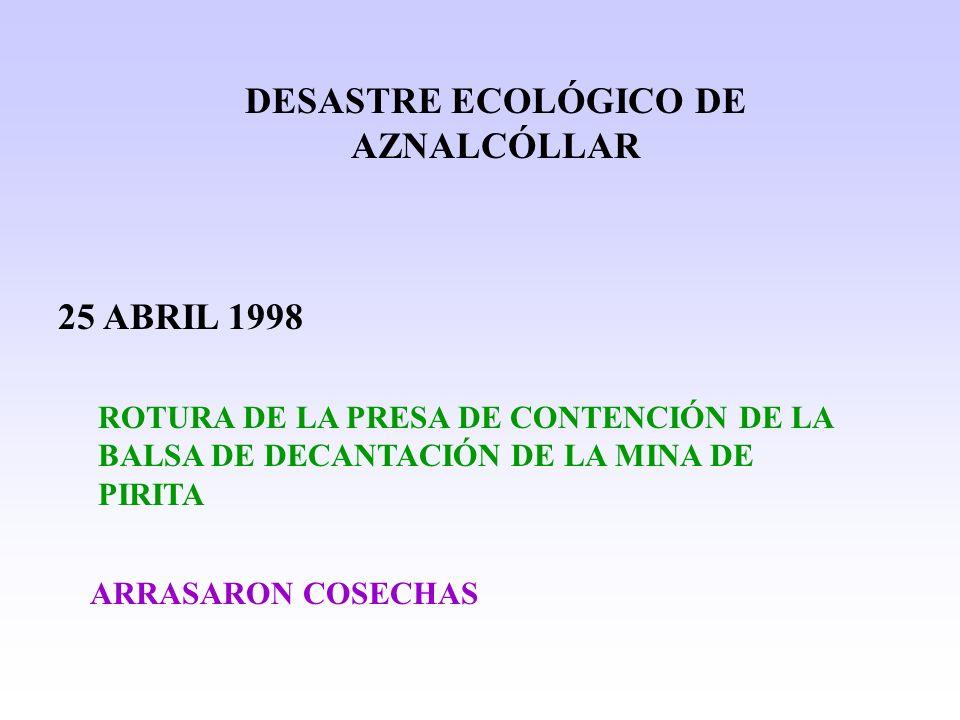 DESASTRE ECOLÓGICO DE AZNALCÓLLAR 25 ABRIL 1998 ROTURA DE LA PRESA DE CONTENCIÓN DE LA BALSA DE DECANTACIÓN DE LA MINA DE PIRITA ARRASARON COSECHAS
