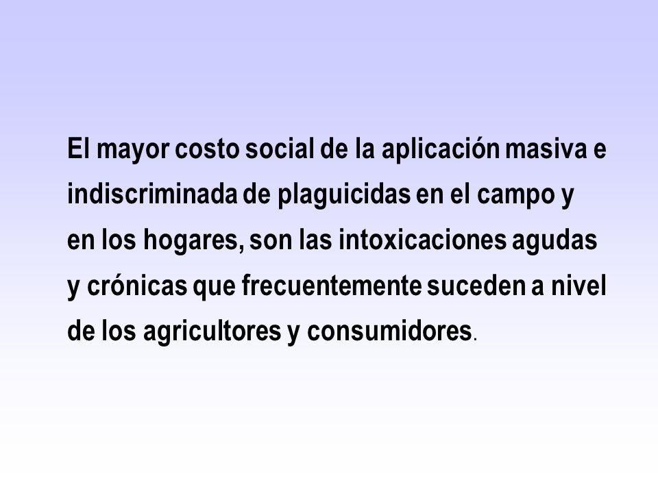 El mayor costo social de la aplicación masiva e indiscriminada de plaguicidas en el campo y en los hogares, son las intoxicaciones agudas y crónicas q