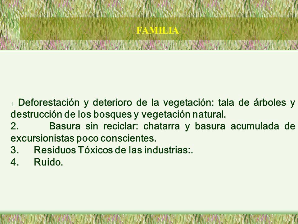 1. Deforestación y deterioro de la vegetación: tala de árboles y destrucción de los bosques y vegetación natural. 2. Basura sin reciclar: chatarra y b