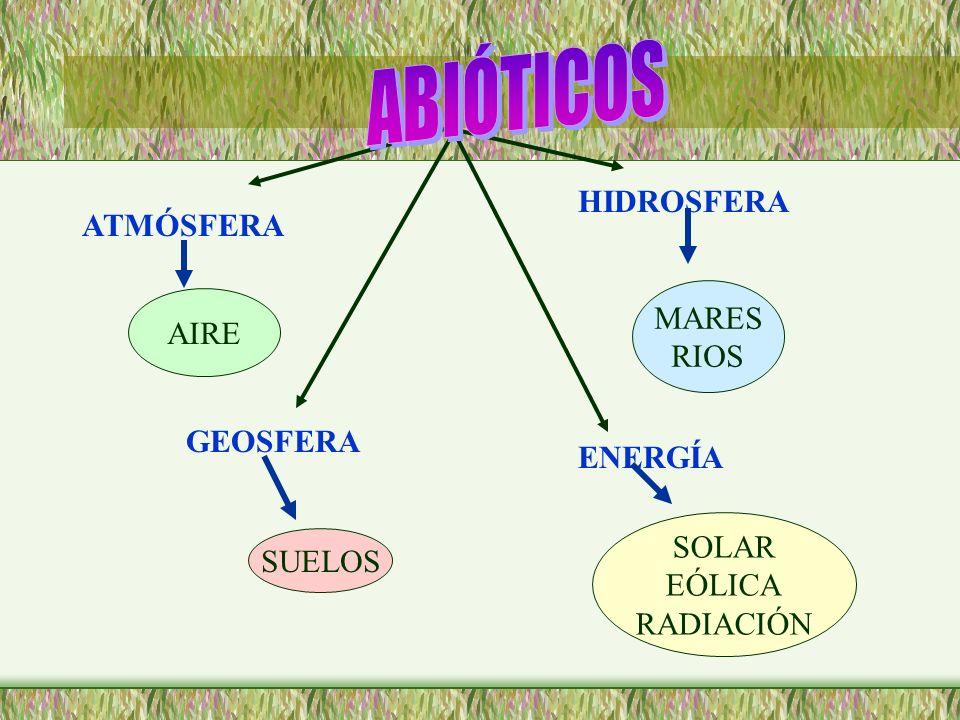 ATMÓSFERA HIDROSFERA GEOSFERA ENERGÍA AIRE MARES RIOS SUELOS SOLAR EÓLICA RADIACIÓN