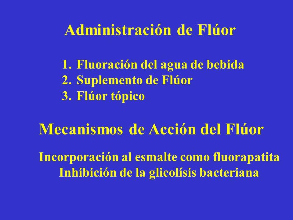 Administración de Flúor 1.Fluoración del agua de bebida 2.Suplemento de Flúor 3.Flúor tópico Mecanismos de Acción del Flúor Incorporación al esmalte c