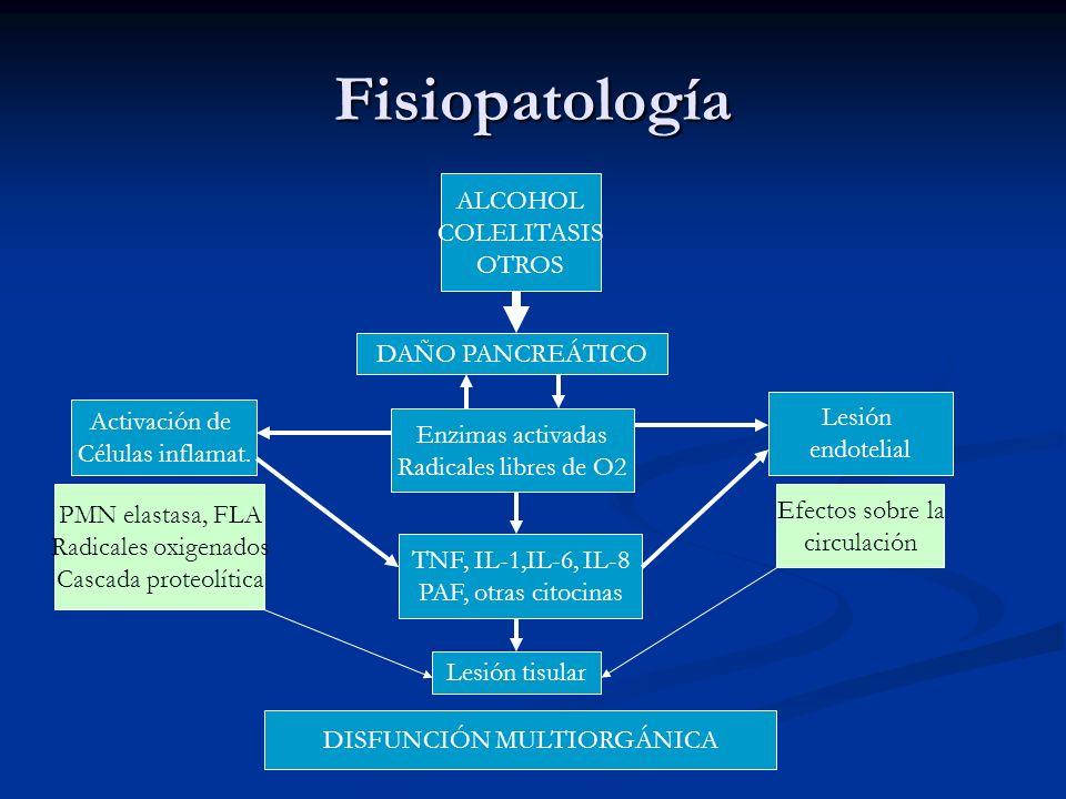 Fisiopatología ALCOHOL COLELITASIS OTROS DAÑO PANCREÁTICO Activación de Células inflamat. Enzimas activadas Radicales libres de O2 Lesión endotelial T