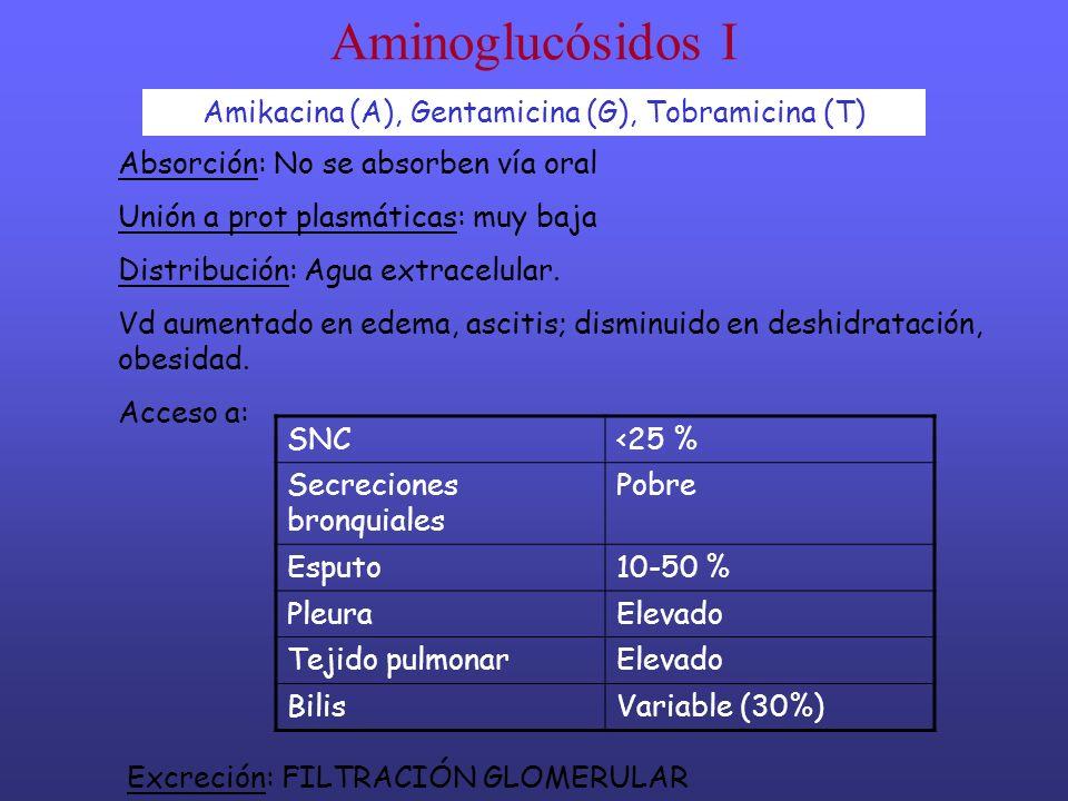Aminoglucósidos I Amikacina (A), Gentamicina (G), Tobramicina (T) Absorción: No se absorben vía oral Unión a prot plasmáticas: muy baja Distribución: