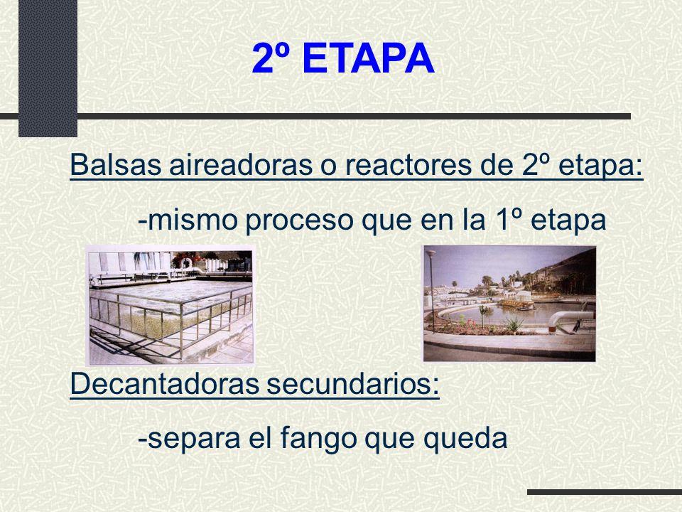 2º ETAPA Balsas aireadoras o reactores de 2º etapa: -mismo proceso que en la 1º etapa Decantadoras secundarios: -separa el fango que queda