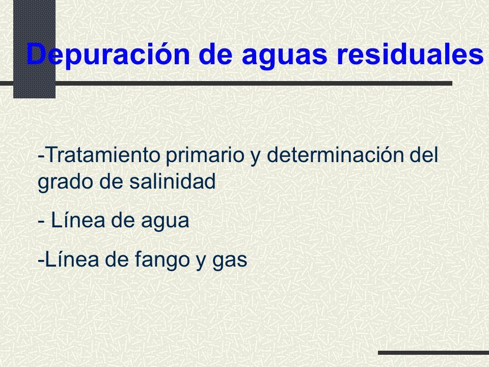Depuración de aguas residuales -Tratamiento primario y determinación del grado de salinidad - Línea de agua -Línea de fango y gas