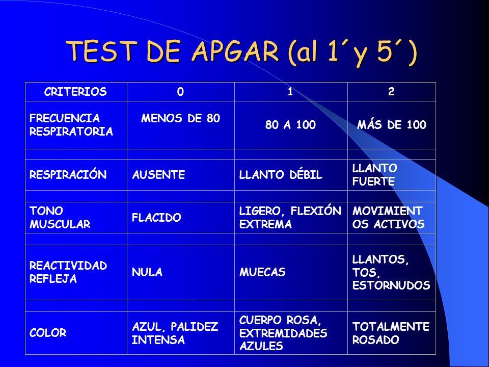 TEST DE APGAR (al 1´y 5´) CRITERIOS012 FRECUENCIA RESPIRATORIA MENOS DE 80 80 A 100MÁS DE 100 RESPIRACIÓNAUSENTELLANTO DÉBIL LLANTO FUERTE TONO MUSCUL