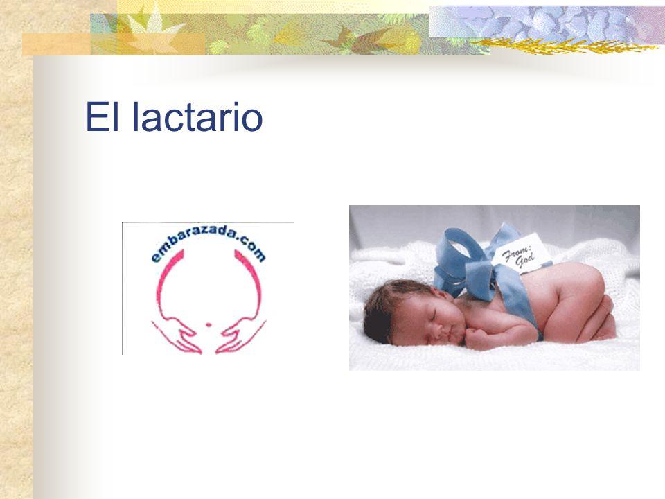 Motivos de ingreso Prematuridad Bajo peso al nacimiento Hiperbilirrubinemia Infección o sospecha de infección