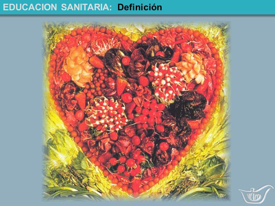 EDUCACION SANITARIA:Definición