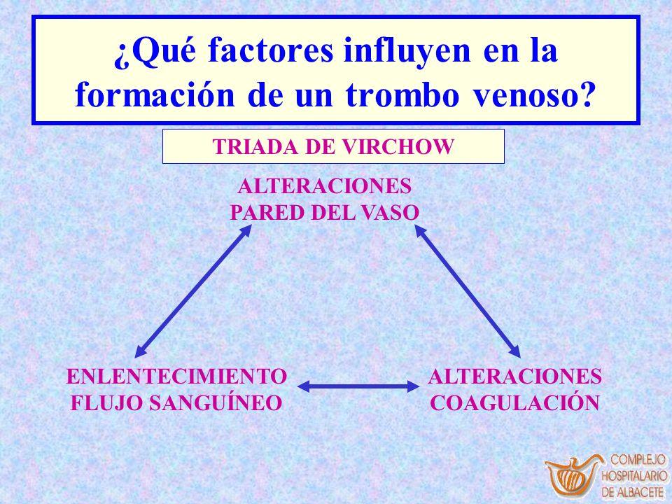 ¿Qué factores influyen en la formación de un trombo venoso? TRIADA DE VIRCHOW ALTERACIONES PARED DEL VASO ENLENTECIMIENTO FLUJO SANGUÍNEO ALTERACIONES