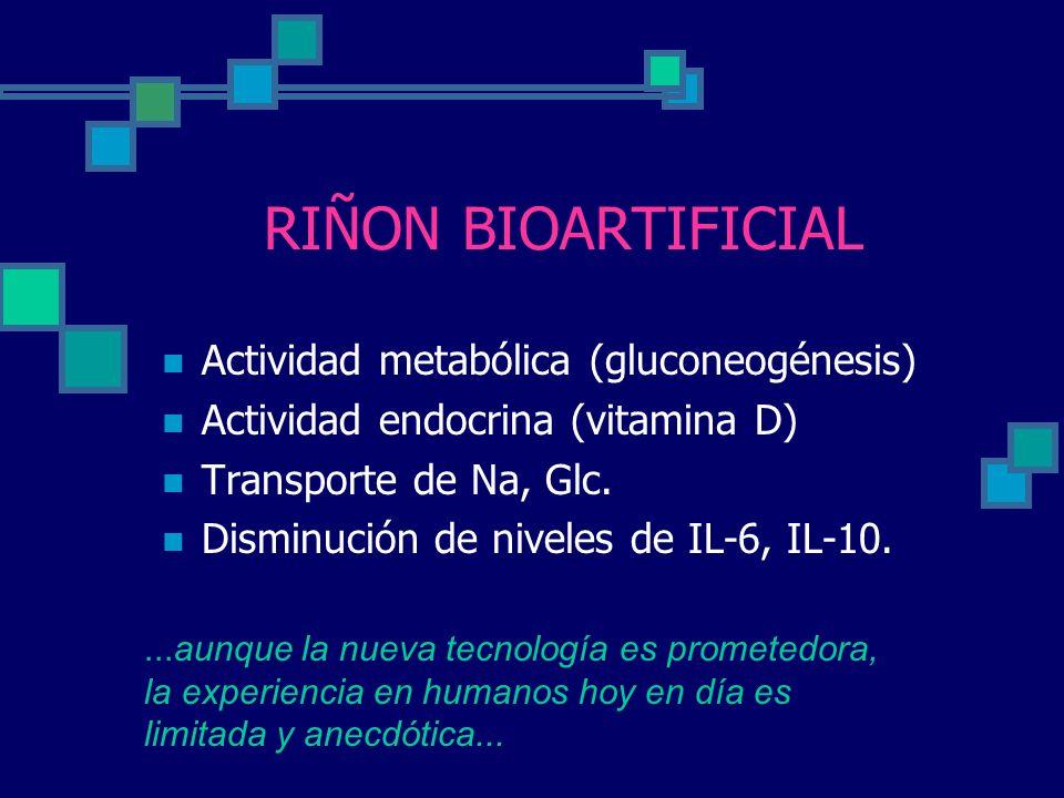 RIÑON BIOARTIFICIAL Actividad metabólica (gluconeogénesis) Actividad endocrina (vitamina D) Transporte de Na, Glc. Disminución de niveles de IL-6, IL-
