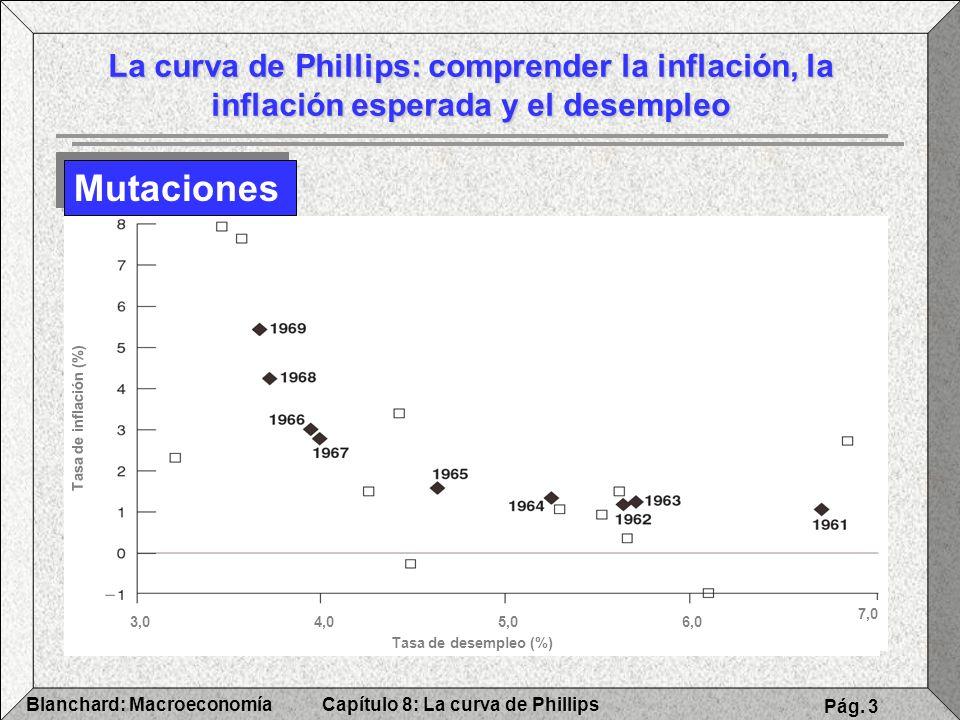 Capítulo 8: La curva de PhillipsBlanchard: Macroeconomía Pág. 3 La curva de Phillips: comprender la inflación, la inflación esperada y el desempleo Mu