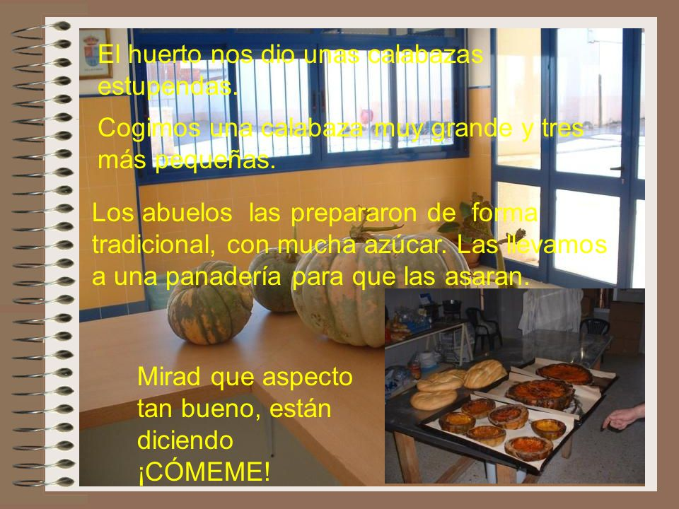 ...nos queda lo mejor recolectar En estas fotos los alumnos de 2º de Villalpardo estaban cogiendo habas, que luego nos comimos al día siguiente en el
