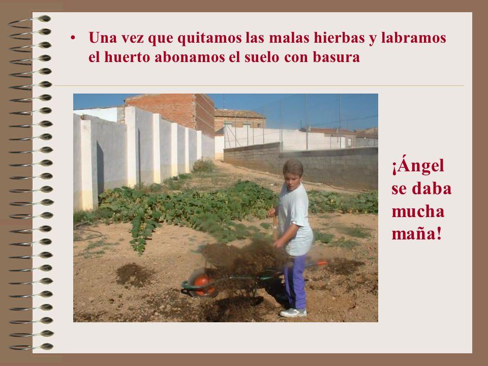 Este es el huerto de El Herrumblar y aquí veis a otros maestros arando Don Daniel Don José Amable