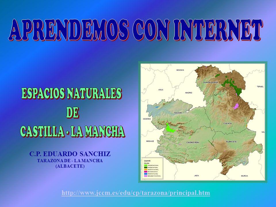 C.P. EDUARDO SANCHIZ TARAZONA DE - LA MANCHA (ALBACETE) http://www.jccm.es/edu/cp/tarazona/principal.htm