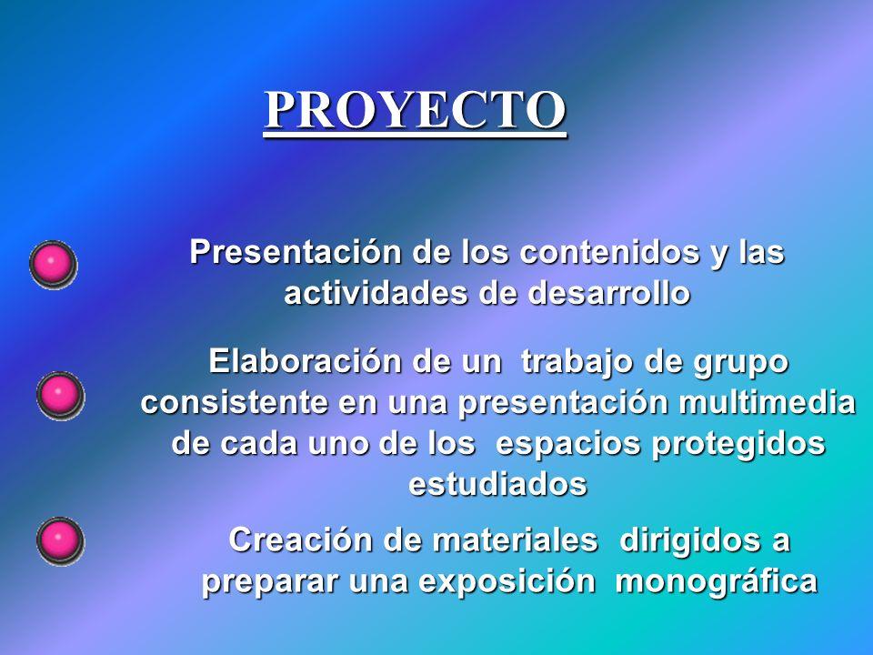 PROYECTO Presentación de los contenidos y las actividades de desarrollo Elaboración de un trabajo de grupo consistente en una presentación multimedia