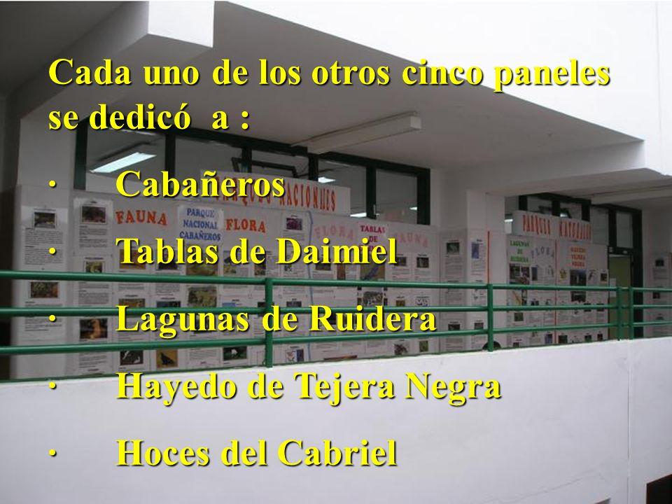Cada uno de los otros cinco paneles se dedicó a : ·Cabañeros ·Tablas de Daimiel ·Lagunas de Ruidera ·Hayedo de Tejera Negra ·Hoces del Cabriel