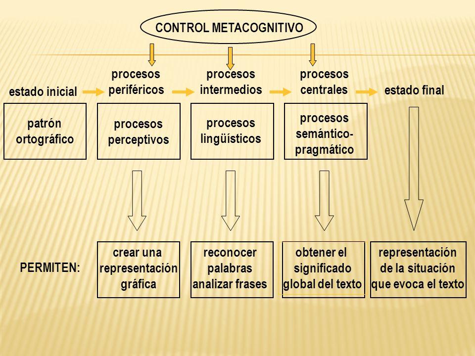 estado final estado inicial patrón ortográfico procesos centrales procesos semántico- pragmático procesos periféricos procesos perceptivos PERMITEN: c
