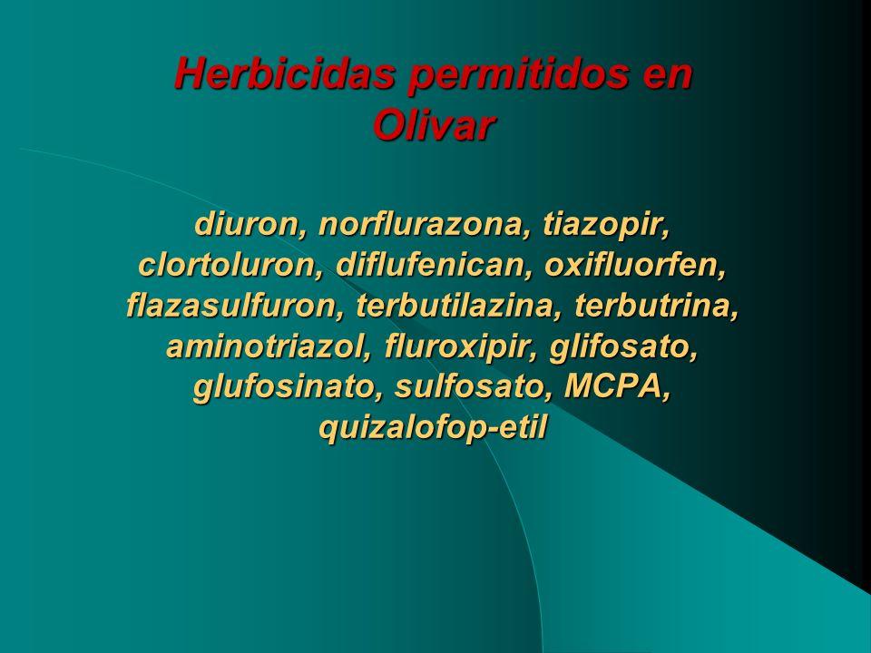 Herbicidas permitidos en Olivar diuron, norflurazona, tiazopir, clortoluron, diflufenican, oxifluorfen, flazasulfuron, terbutilazina, terbutrina, amin