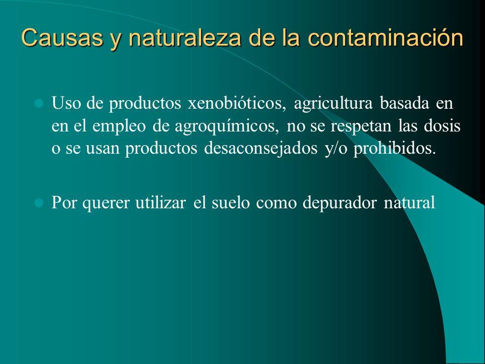 Causas y naturaleza de la contaminación Uso de productos xenobióticos, agricultura basada en en el empleo de agroquímicos, no se respetan las dosis o