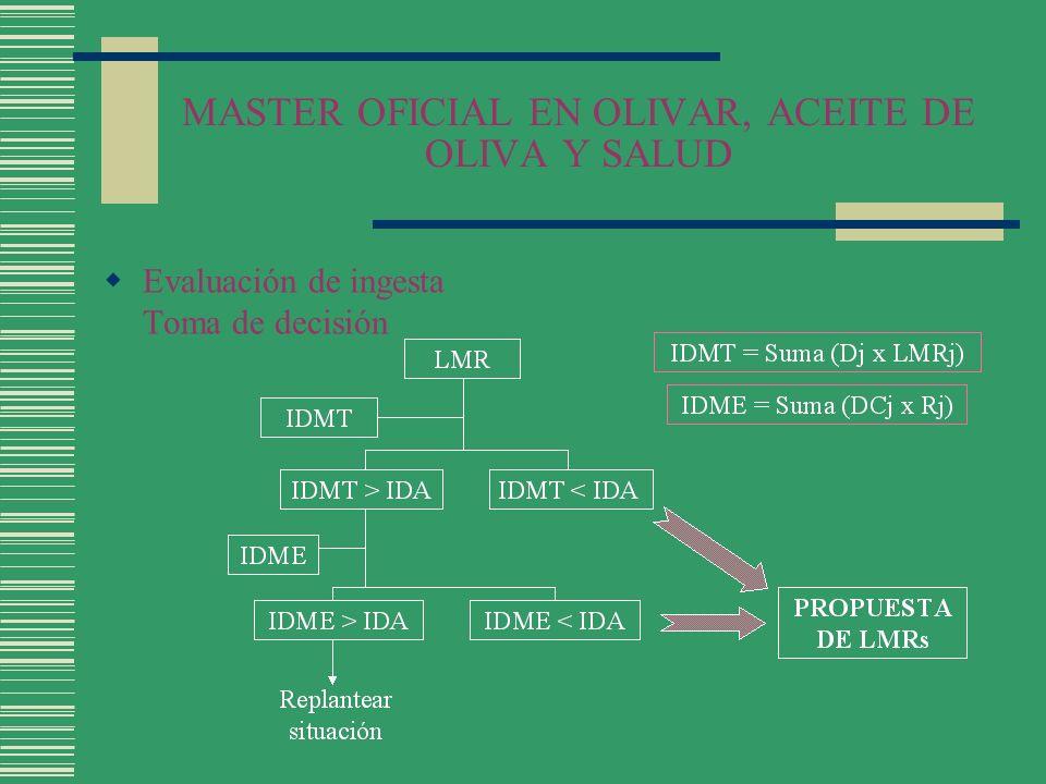 MASTER OFICIAL EN OLIVAR, ACEITE DE OLIVA Y SALUD Evaluación de ingesta Toma de decisión