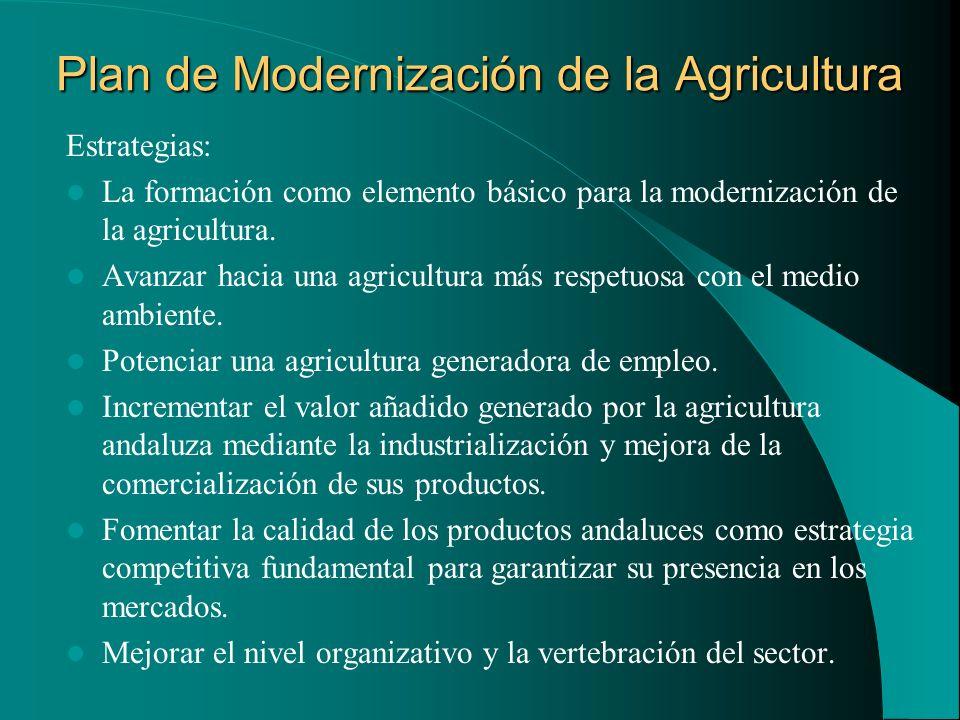 Plan de Modernización de la Agricultura Estrategias: La formación como elemento básico para la modernización de la agricultura. Avanzar hacia una agri