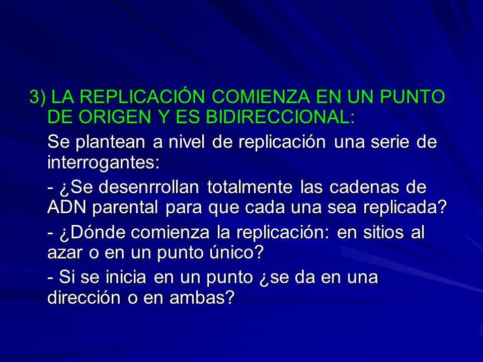 3) LA REPLICACIÓN COMIENZA EN UN PUNTO DE ORIGEN Y ES BIDIRECCIONAL: Se plantean a nivel de replicación una serie de interrogantes: - ¿Se desenrrollan