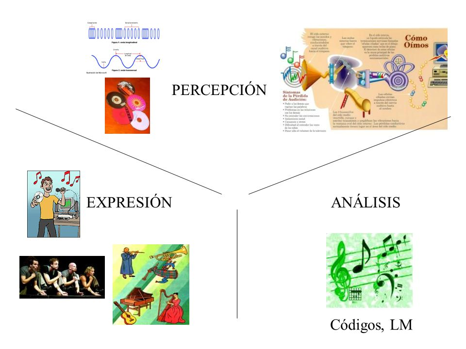Actividades Tema 1 Leer Música (ficha).Argumentos a favor de la inclusión de la música en Ed.