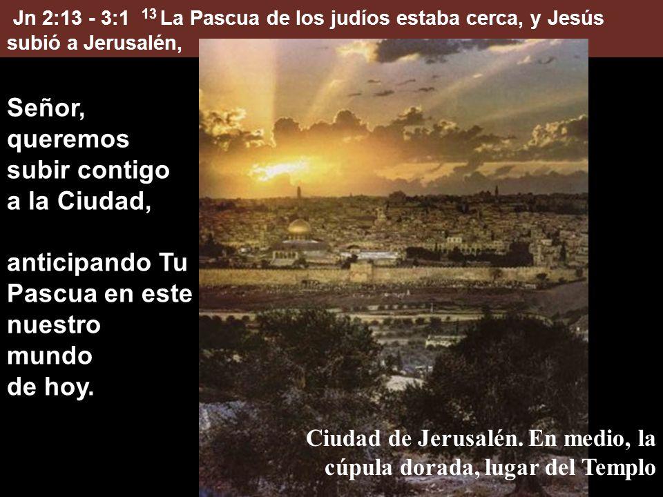 Jn 2:13 - 3:1 13 La Pascua de los judíos estaba cerca, y Jesús subió a Jerusalén, Señor, queremos subir contigo a la Ciudad, anticipando Tu Pascua en este nuestro mundo de hoy.