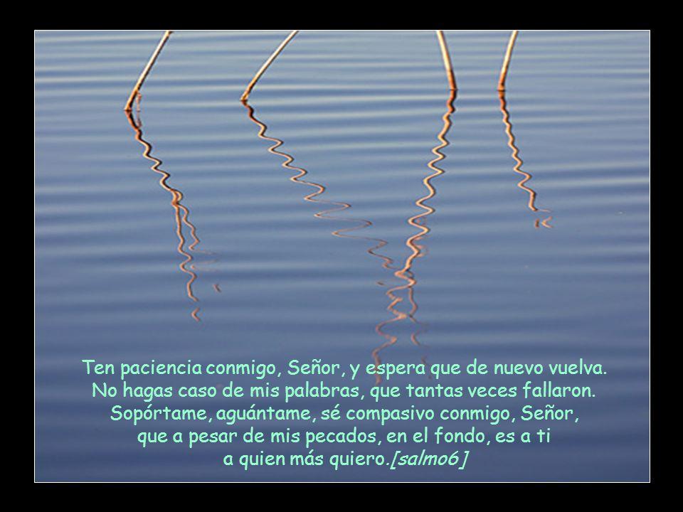 Quiero ser, Señor Jesús, como el árbol que crece junto al río y bebe en profundizad y hondura en las corrientes de agua. [salmo 1]