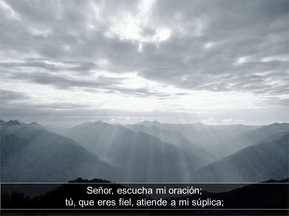 Señor, escucha mi oración; tú, que eres fiel, atiende a mi súplica;