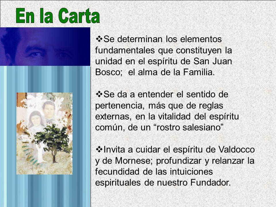 Se determinan los elementos fundamentales que constituyen la unidad en el espíritu de San Juan Bosco; el alma de la Familia.