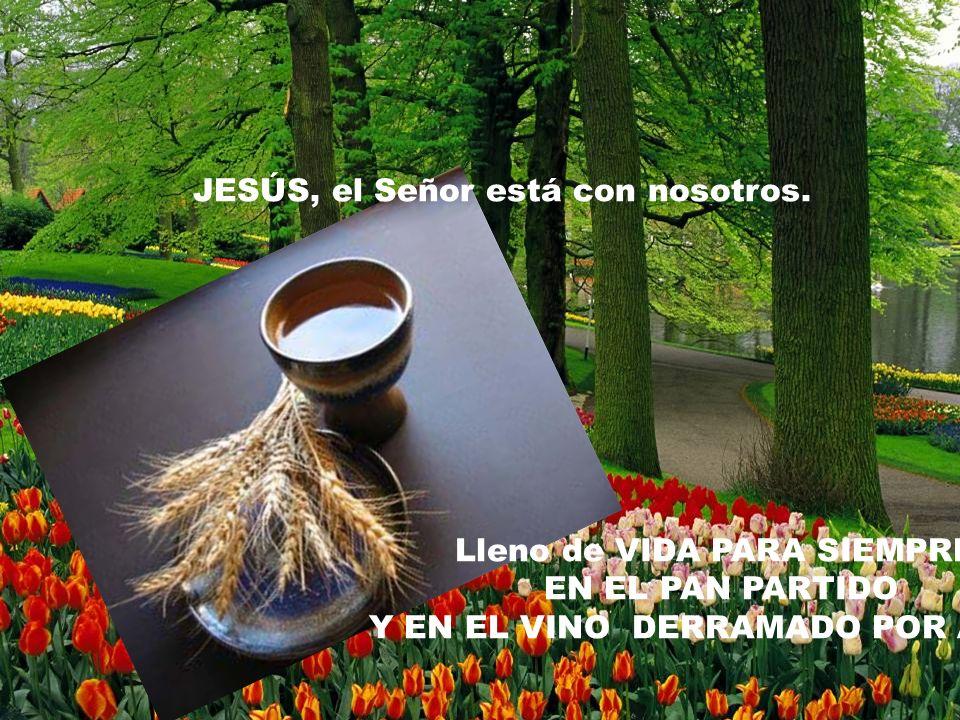 JESÚS, el Señor está con nosotros. Lleno de VIDA PARA SIEMPRE EN EL PAN PARTIDO Y EN EL VINO DERRAMADO POR AMOR.