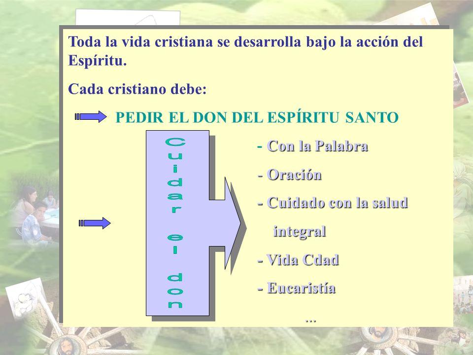 Toda la vida cristiana se desarrolla bajo la acción del Espíritu. Cada cristiano debe: PEDIR EL DON DEL ESPÍRITU SANTO Con la Palabra - Con la Palabra