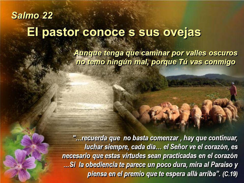 El Señor es mi heredad Protégeme, oh Dios: en ti me refugio Protégeme, oh Dios: en ti me refugio Salmo 15 Pensad solo en realizar bien vuestro deber,