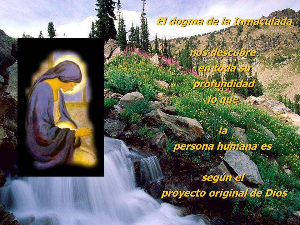 El dogma de la Inmaculada nos descubre en toda su profundidad profundidad lo que la persona humana es según el proyecto original de Dios