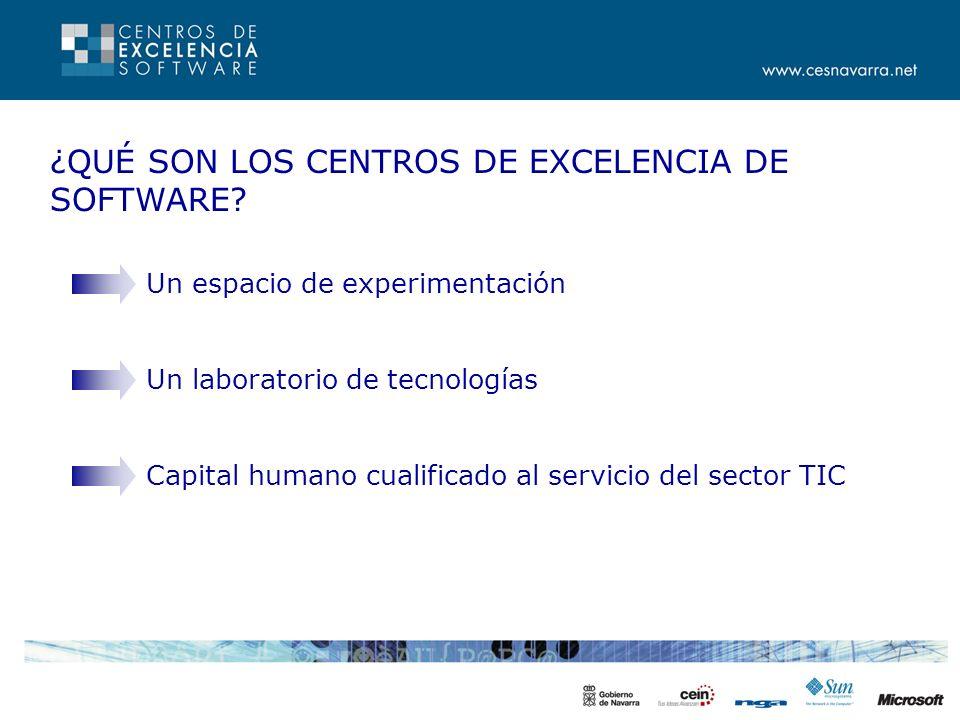 SERVICIOS - PROYECTOS PILOTO Participan empresas del sector.