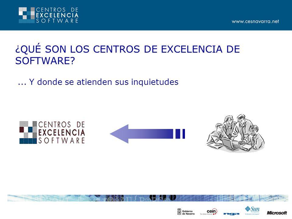 OBJETIVO DE LOS CENTROS Mejorar el conocimiento y la calidad de desarrollo de profesionales y empresas de software de Navarra Para afrontar proyectos de mayor envergadura, con mayor calidad y dar un mejor servicio a sus clientes