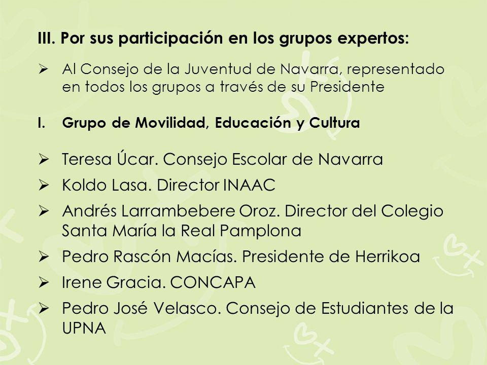 III. Por sus participación en los grupos expertos: Al Consejo de la Juventud de Navarra, representado en todos los grupos a través de su Presidente I.