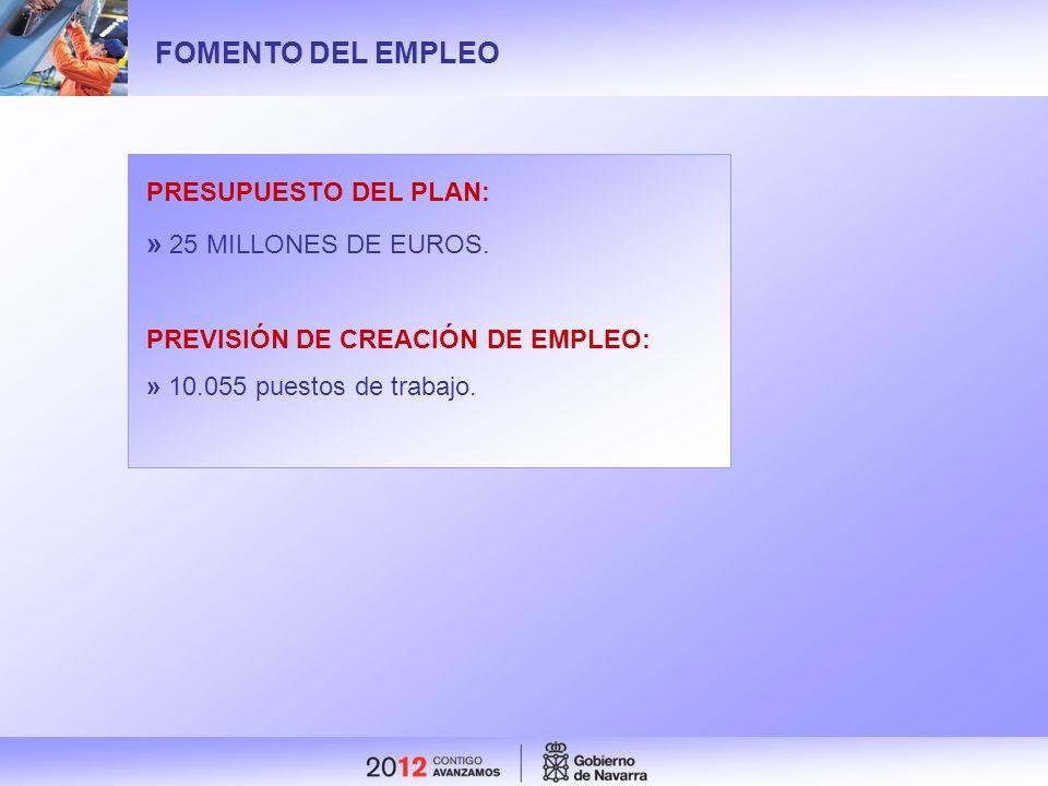 FOMENTO DEL EMPLEO PRESUPUESTO DEL PLAN: » 25 MILLONES DE EUROS. PREVISIÓN DE CREACIÓN DE EMPLEO: » 10.055 puestos de trabajo.