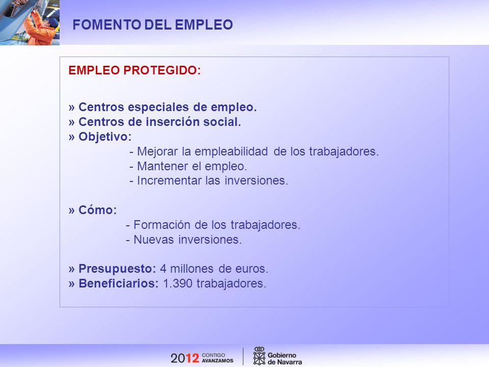 FOMENTO DEL EMPLEO EMPLEO PROTEGIDO: » Centros especiales de empleo. » Centros de inserción social. » Objetivo: - Mejorar la empleabilidad de los trab